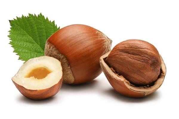 Hạt của cây phỉ là nguyên liệu chính trong các loại dược, mỹ phẩm
